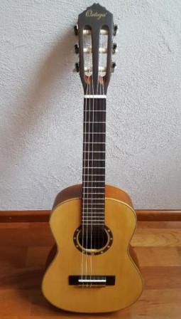 12 guitar ortega r121